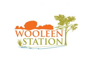 WooleenStation Logo Color NEW
